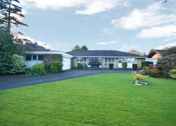 Thumbnail 4 bedroom bungalow for sale in Barnet Road, Arkley, Hertforshire