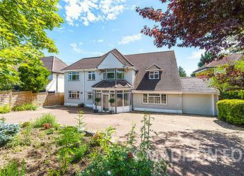 Thumbnail 5 bed detached house for sale in Spring Grove, Loughton