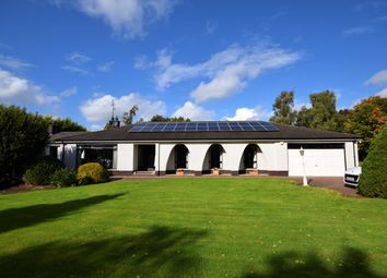 Thumbnail 4 bed detached bungalow for sale in Mullalelish Road, Richhill, Armagh