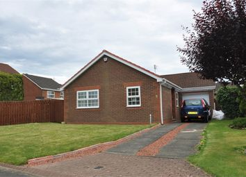 Thumbnail 3 bed detached bungalow to rent in Low Haugh, Ponteland, Newcastle.