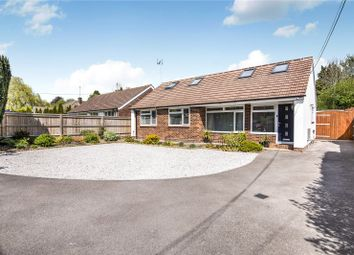 Thumbnail 4 bed bungalow for sale in Springvale Road, Winchester, Hampshire