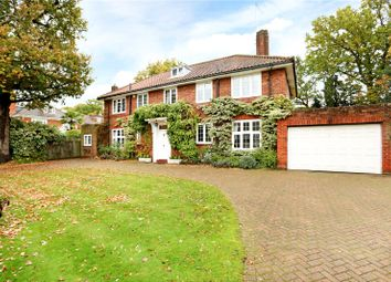 Thumbnail 6 bed property for sale in Barham Road, Wimbledon