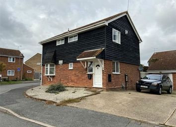 Thumbnail 4 bed detached house to rent in Brocksparkwood, Brentwood, Essex