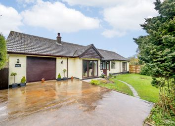 Thumbnail 3 bed detached bungalow for sale in Green Lane, Axminster, Devon