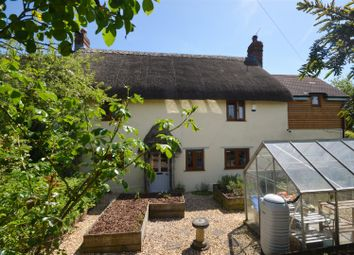Thumbnail 4 bed cottage for sale in Shaftesbury Road, East Knoyle, Salisbury