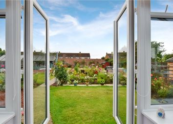 Thumbnail 4 bed bungalow for sale in Tidings Hill, Halstead, Essex