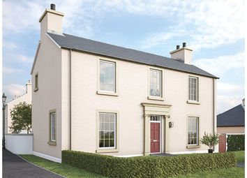 Thumbnail 4 bed detached house for sale in Badger's Green, Tornagrain, Inverness