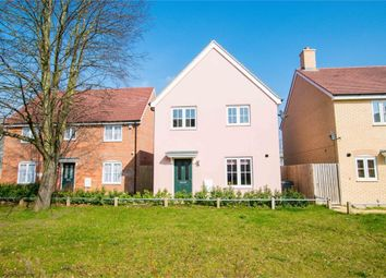 Thumbnail 4 bed detached house for sale in Cinder Street, Colchester, Essex