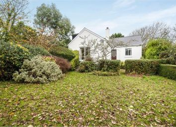 Thumbnail 2 bed bungalow for sale in St Ives, Cornwall, England