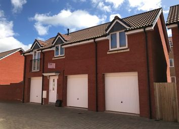 Thumbnail 2 bed flat to rent in Nile Road, Exeter