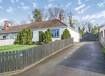 Thumbnail 3 bed semi-detached bungalow for sale in Mullaghbane Road, Armagh