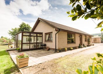 Thumbnail 3 bed cottage for sale in Law View, Lanton, Jedburgh, Roxburghshire