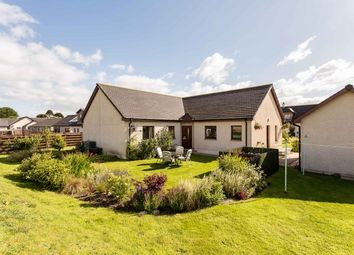 Thumbnail 4 bed bungalow for sale in Keilor Way, Inverkeilor, Arbroath, Angus