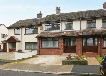 Thumbnail 2 bed terraced house for sale in Loran Road, Larne, County Antrim