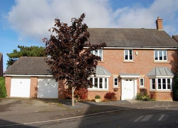 Thumbnail 4 bedroom detached house for sale in North Meadow View, Duston, Northampton