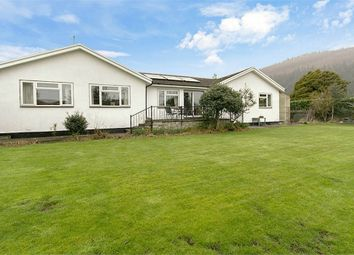 Thumbnail 4 bed detached bungalow for sale in Crabtree Walk, Knighton, Powys
