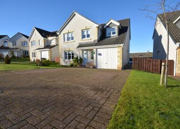 Thumbnail 4 bed detached house for sale in Stirling Crescent, Galston