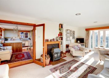 Thumbnail 4 bed detached house for sale in Geldeston, Beccles