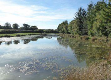 Thumbnail Land for sale in Ashreigney, Chulmleigh
