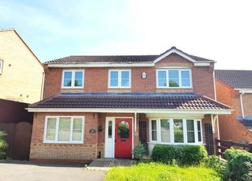 Thumbnail 4 bed property to rent in Peel Drive, Wilnecote, Tamworth