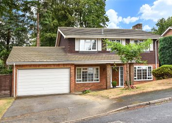Thumbnail 4 bed detached house to rent in Stockwood Rise, Camberley, Surrey