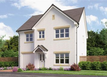 "Thumbnail 4 bedroom detached house for sale in ""Laing"" at Red Deer Road, Cambuslang, Glasgow"