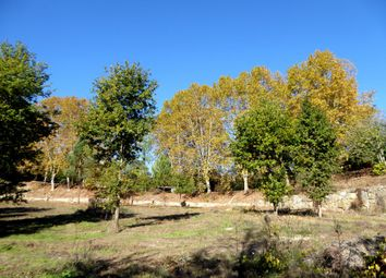Thumbnail Farm for sale in Property Contiguous To The River, Portugal, Marco De Canaveses, Porto, Norte, Portugal