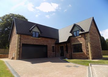 Thumbnail 5 bed detached house for sale in No.4, The Eamont, William's Pasture, Aglionby