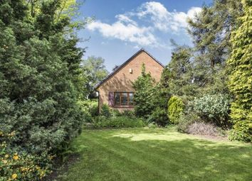 Thumbnail 2 bedroom bungalow for sale in The Common, Barwell, Leicester, Leicestershire