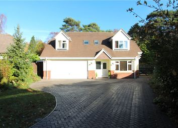 Thumbnail 4 bed detached house for sale in Birch Avenue, West Parley, Ferndown