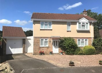 Thumbnail 4 bed detached house for sale in Aspen Close, Honiton