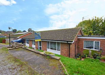 Thumbnail 4 bed bungalow for sale in Selby Gardens, Uckfield