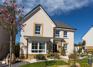 "Thumbnail 4 bed detached house for sale in ""Balbardie"" at Haddington"