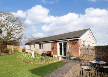 Thumbnail 3 bedroom detached bungalow for sale in Cuddy Lonning, Wigton