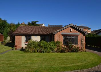 Thumbnail Property for sale in Springfield Park, Alnwick