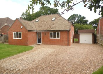 Thumbnail 4 bed detached bungalow to rent in Anmore Road, Denmead, Waterlooville