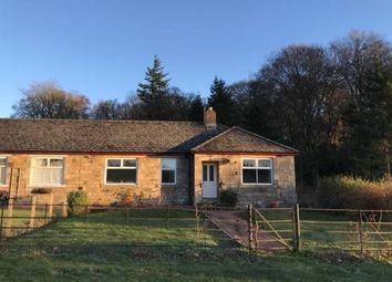 Thumbnail 3 bed bungalow to rent in Croft Cottage East, Blenkinsopp, Haltwhistle