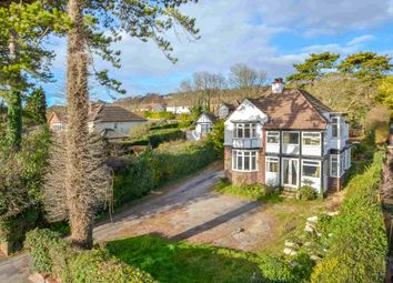 Thumbnail 4 bedroom detached house for sale in Sea View Road, Drayton, Portsmouth