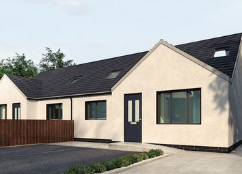 3 bed semi-detached bungalow for sale in Pwll Trap, St Clears, Carmarthen SA33