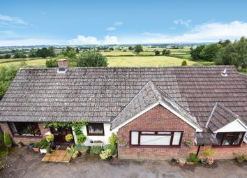Thumbnail 5 bed detached bungalow for sale in Adber, Sherborne