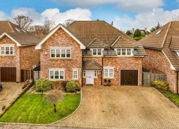 Thumbnail 5 bedroom detached house for sale in Bolle Road, Alton, Hampshire
