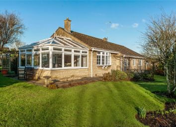 Thumbnail 3 bed detached bungalow for sale in Springfield, Norton St. Philip, Bath