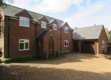Thumbnail 4 bed detached house to rent in St. Andrews Road, East Haddon, Northampton