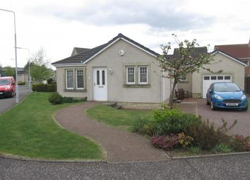 Thumbnail 2 bed bungalow to rent in 1 Rowan Lane, Leven