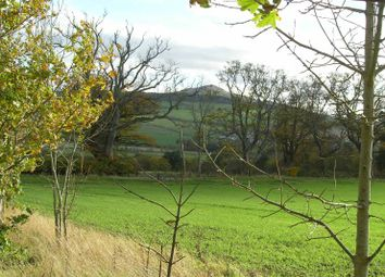Thumbnail Property for sale in Residential Plot At Minto, Denholm
