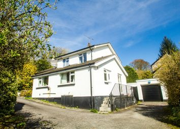 Thumbnail 4 bed detached house for sale in Milton Combe, Yelverton