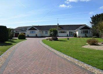 Thumbnail 3 bedroom bungalow for sale in Bascombe Close, Churston Ferrers, Brixham