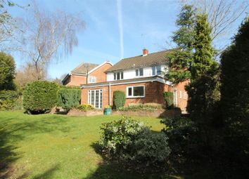Thumbnail Property to rent in Mandeville Close, Watford