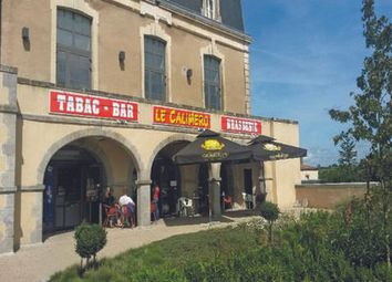 Thumbnail Pub/bar for sale in Argenton-Les-Vallees, Deux-Sèvres, France