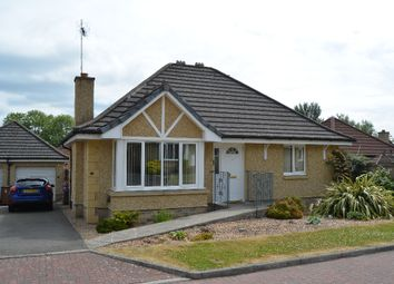 Thumbnail 3 bed bungalow for sale in Sneddon Place, Airth, Falkirk